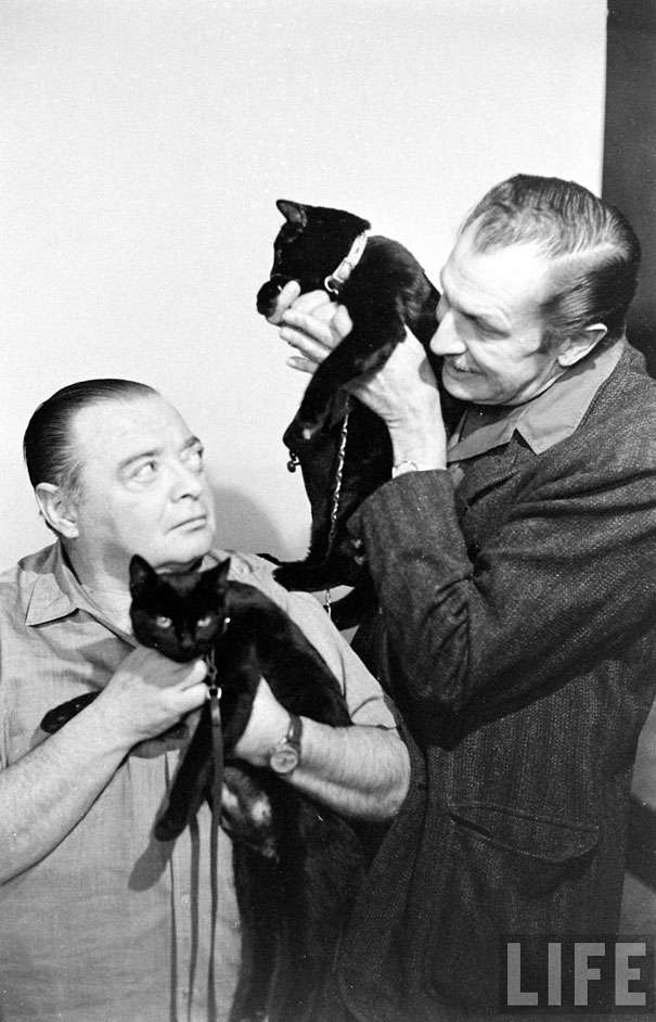 black-cat-auditions-hollywood-1961-16 2