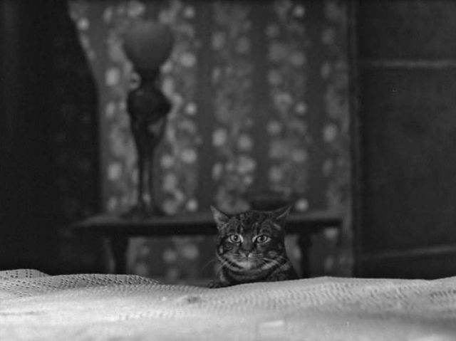Aaagh! A terrifying sight! Tabitha appears at the bottom of Walter's bed and gives him a second heart attack, this time fatal.